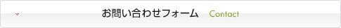お問い合わせフォーム Contact